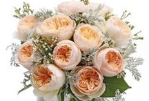 The Flower Delivery Company Designs / Here are some of our beautiful designs that you can find on our website www.theflowerdeliverycompany.co.nz