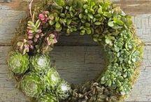 vence -wreaths
