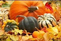 Addicted to pumpkins