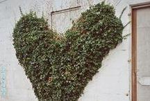 LTCO // Gardens / Gorgeous Gardens