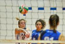 III divisione F vs Elleppi / Partite della III divisione femminile della YZ volley contro Elleppi durante il campionato di pallavolo della stagione 2014/2015