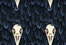 Fabric / Fabric
