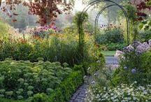 Garden,Terrace,Pool,Balcony