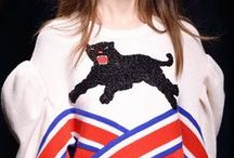 Dreamy Cat / Cat Fashion