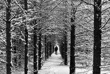 Le Québec en images / Des images du Québec sous la neige !