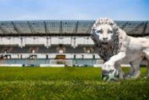 Lions / Львы / Marble lion sculpture. Статуи львов.