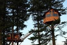 Tree Houses / Did you dream of owning and living in a tree house as a kid or even now? Here you will find the best tree houses around the world.