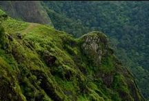 Places of Interest in Thekkady