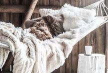 home hammock