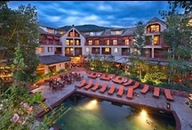 Aspen : Must Stay Here / by Just Aspens
