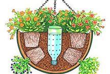 Astuces pour le jardin