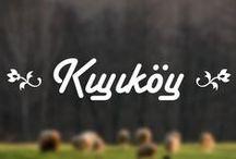 Kıyıköy / #Türkiye #Turkey #Kıyıköy #Kırklareli #photo #photography #Tree #Ağaç #Koyun #Sheep #Nature #Doğa #Çiftlik #Farm http://www.phardon.com/kiyikoy-kirklareli-fotograflari/