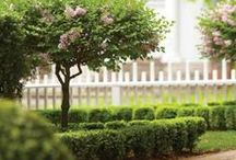 Garden: Not So Secret Garden / Outdoor living with a focus on landscaping, patio furniture, and wonderful ideas for your outdoors! / by Jo Oakes