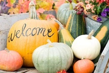 All Things Autumn / Inspiration for Thanksgiving, Halloween and all things Autumn!