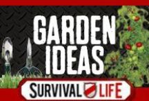 Garden Ideas / Garden ideas and outdoors DIY projects from Survival Life contributors. Step by step tutorials, how to's for beginners, grow a garden for food, instructions for backyard gardening and urban vertical gardening in small spaces. Tools and tips for growing gardens for self-sufficiency. Creative gardening DIY ideas on a budget for vegetable gardens, easy homestead gardens, raised bed gardening, and recycled container herb gardens. Follow us on Pinterest and comment on a pin to be added to our board. / by Survival Life | Prepping - Outdoors Ideas