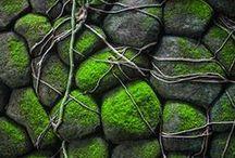 stones_rocks_pebbles