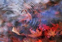 itt van az ősz_autumn