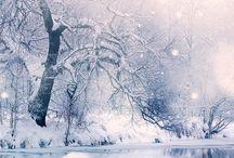 Winter / Snowy