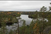 Hiking Tours in Finland / Travel tips and ready-made hiking tours in National Parks of Finland. Day tours, from guesthouse to guesthouse tours and base camps and arrangements for longer hiking tours  handpicked by Skafur-Tour, your local online travel agency.    #hiking #trekking
