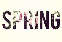 Spring / The freshest season of the year