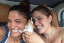 TimosBoo / Το γατάκι της Μαίρης Συνατσάκη ^_^