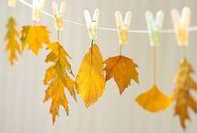 Podzim | přírodniny