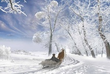 Amazing Winter Wonderlands