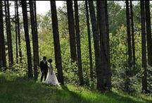Weddings / Le più belle foto scattate durante i matrimoni a Le Pinete e foto d'ispirazione trovate in giro, per aiutarvi a organizzare il vostro prossimo matrimonio.