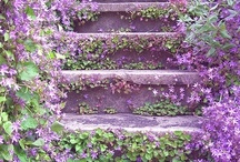 Gardening / by Maria B
