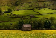 Reasons to live in the countryside / Not so grim up North
