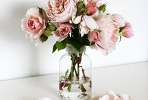 B l o o m / Every woman loves a bunch of flowers x