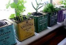 Gardening with mum and mim / Dingetjes voor planten en healthy stuff enzo
