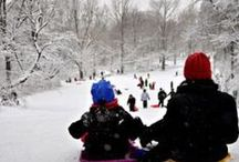 Favorite Sledding Hills in NYC / List of the top 10 places to take the kids sledding in New York City. Winter fun for the whole family!
