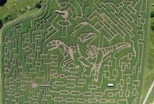 Top 10 Amazing Corn Mazes in North America / Check out the most amazing corn mazes in the United States! These are great places to visit and get lost in fall family fun!