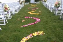 Aisle Petals - Weddings / We often get requests from brides to petal the aisles that they walk down. There are tons of options for aisle petaling. Here are just a few samples of what we can do.