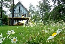 Cottage Listings / We make it easy for you to find and rent the perfect cottage for your next vacation. Check out some of our feature rental properties!