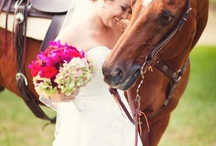 Country Wedding / by Vickie Harvey