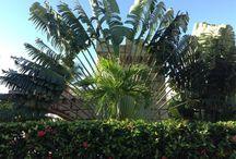 Dominica 2013 / Helyek, amerre már jártam