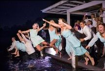 Paradise Cove Weddings / White Rose Entertainment Weddings at Paradise Cove