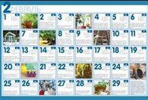 Календарь работ в саду и огороде / Работы в саду и огороде, Дача, сад, огород, посадка, уход, теплица, выращивание рассады