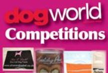 DOG WORLD COMPETITIONS! / Enter out great competitions to win fantastic prizes!