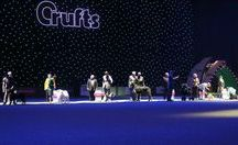 CRUFTS 2017 / All the latest news and action from #Crufts 2017!