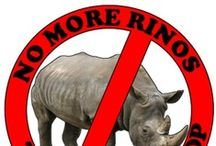 """RINOs / All about """"Republicans In Name Only"""""""