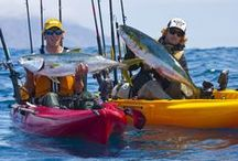 Hobie Mirage Outback / Kayak anglers propelled the Hobie Outback to fishing supremacy.  Better than ever with a time-tested hull that's an ideal blend of confident stability and smooth maneuverability.