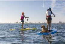 Hobie Mirage Eclipse Standup Paddle Boarding / Join the Hobie SUP Revolution: Pedal-powered Standup Paddle Boarding!