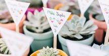 Cadeaux d'invités mariage à faire soi-même / locaux / écolo / Des cadeaux d'invités à l'image de votre couple et à partir de produits locaux, c'est possible !