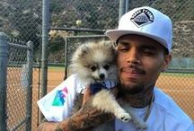 Chris Brown / My hubby  teambreezy for ever