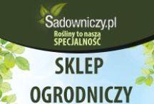 NASZA OFERTA SADOWNICZY.PL / Zobacz jakie kategorie produktów posiadamy w ofercie na Sadowniczy.pl