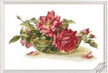 haft krzyżykowy róże