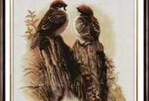 haft krzyżykowy zwierzęta